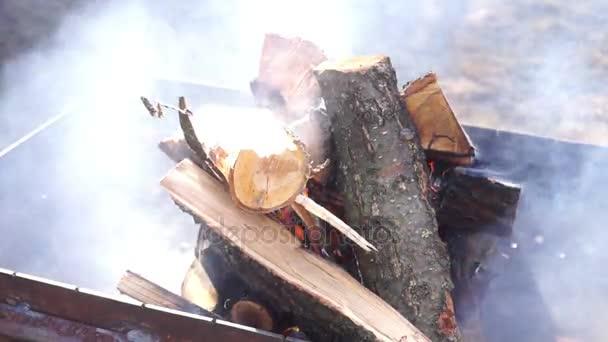 Hořící oheň stromy kouř