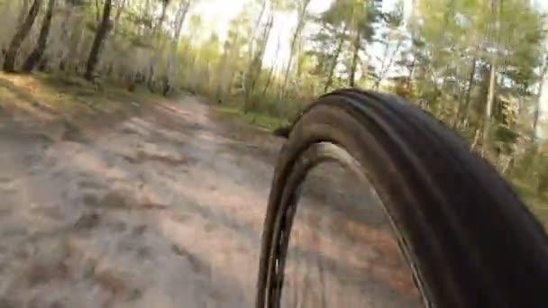 Bike horská stezka park příroda slunce sport
