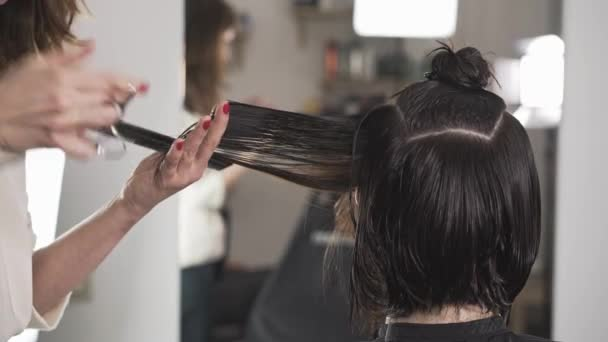 Charming young woman stylist cutting her client s hair in a salon
