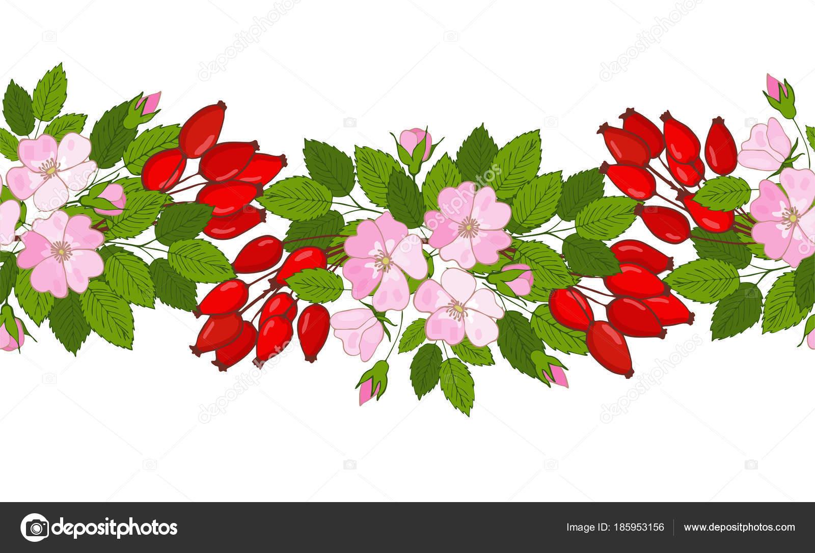 Безшовні Шипшина Орнамент. Візерунок ягоди і квіти Шипшина– стокова  ілюстрація 8984f9f0a0d9a