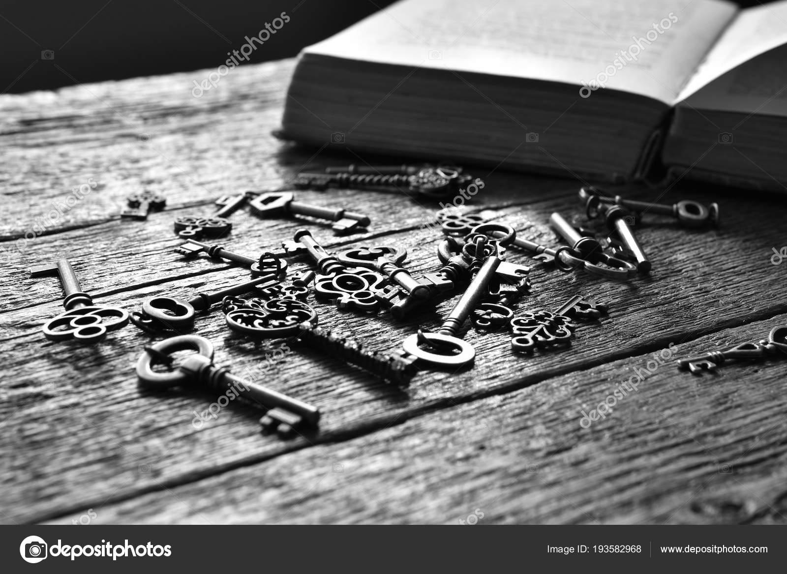 Une Image Noir Blanc Des Touches Antiques Livre Ouvert Sur