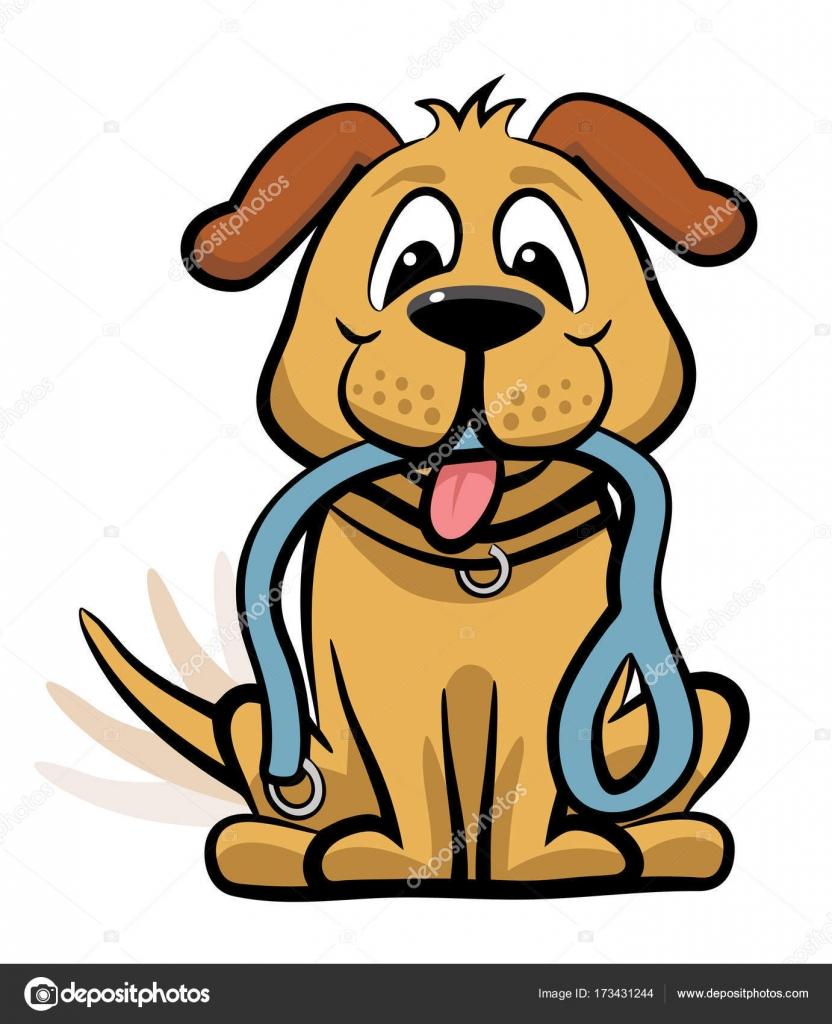 Dog Videos Download Free
