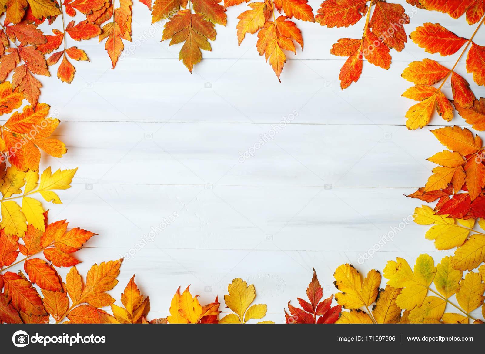 Fotos hoja blanca decorada mesa de madera blanca - Descargar autumn leaves ...