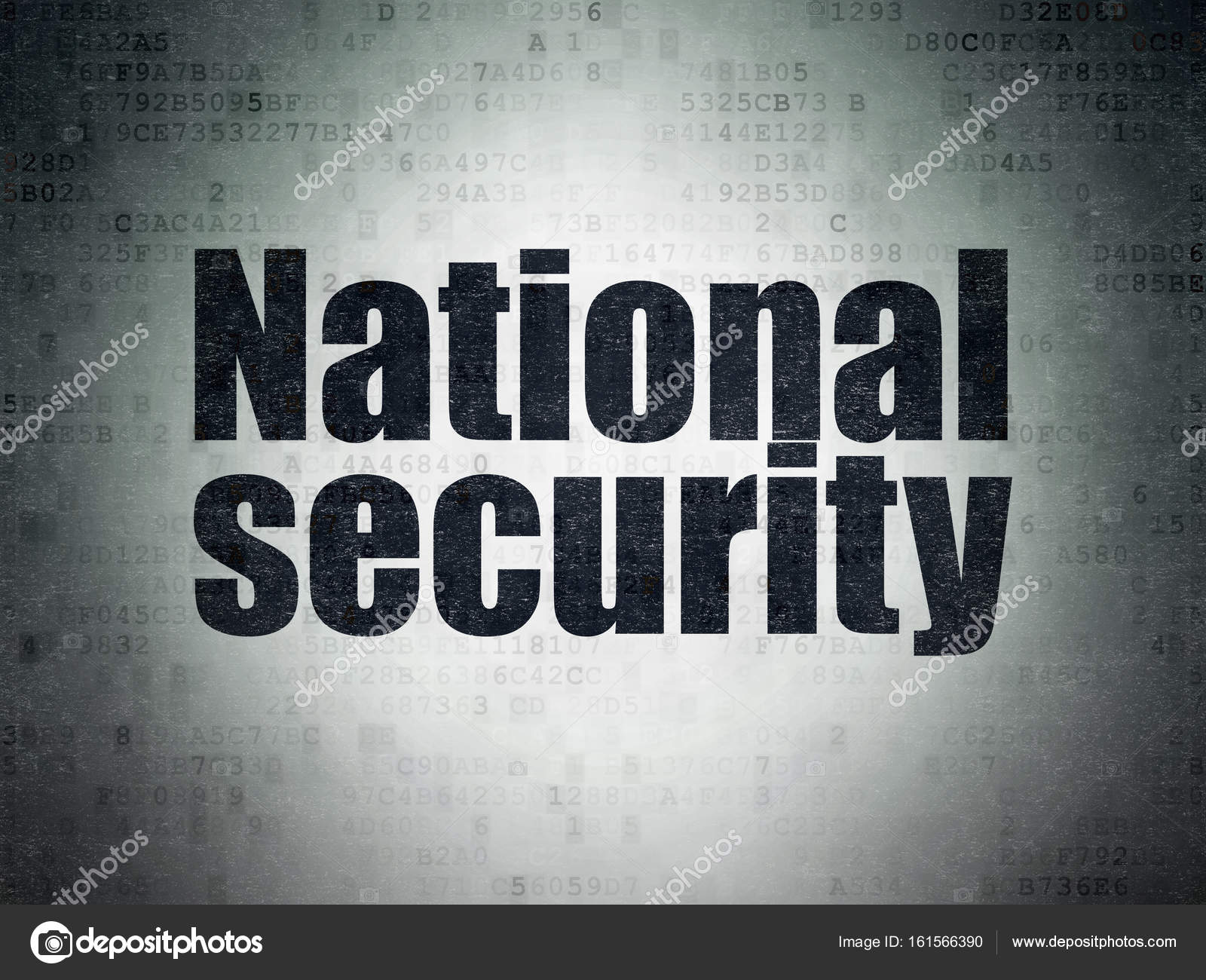 national security movie download
