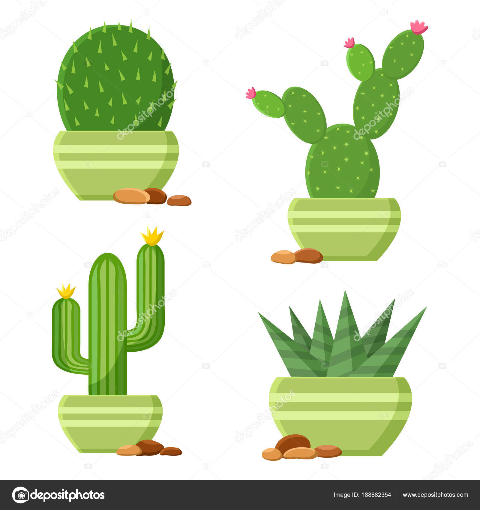 Colored Cactus Set Flowerpots Pebbles Flowering Cactus Cartoon