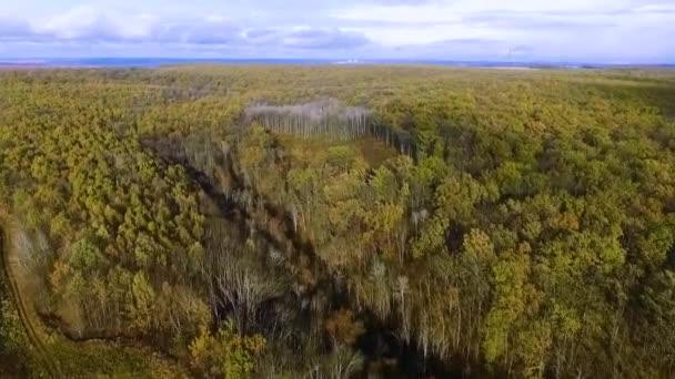 telket az erdőben. quadrocopter
