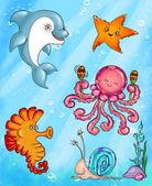 Photo Cartoon Sea Animals