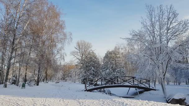 Prima neve nel Parco della città con un ponte in una giornata di sole