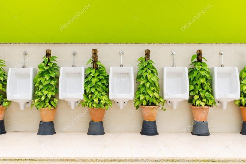 Toilet interieur met witte urinoir rij en sierplanten