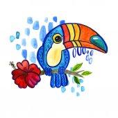 Watercolo pták Tukan Ramphastida, tropický květ