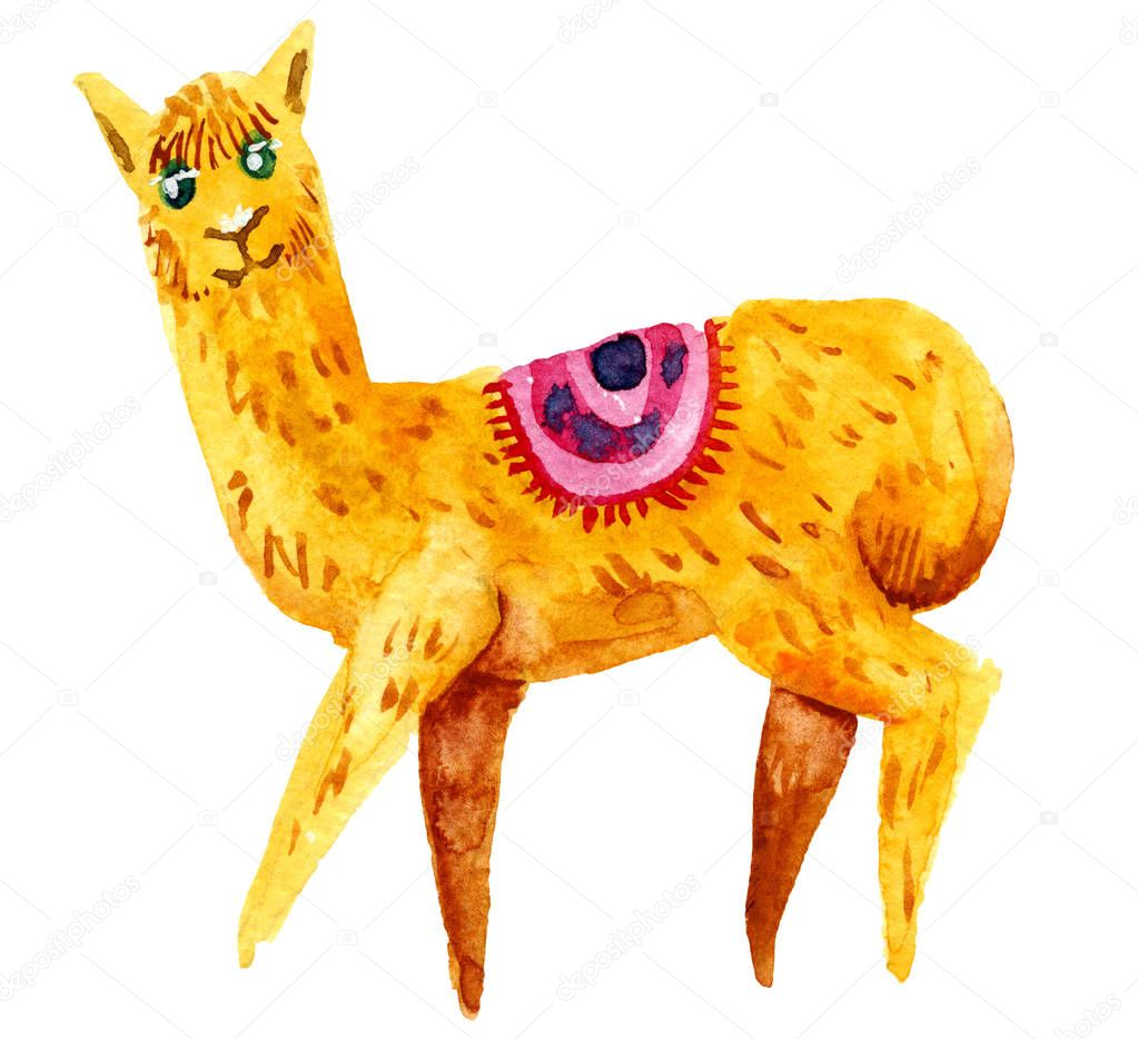 Watercolor llama, alpaca isolated on white background.