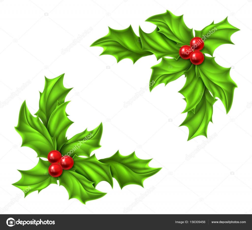 Disegno Di Natale Agrifoglio Vettoriali Stock Krisdog 156309456