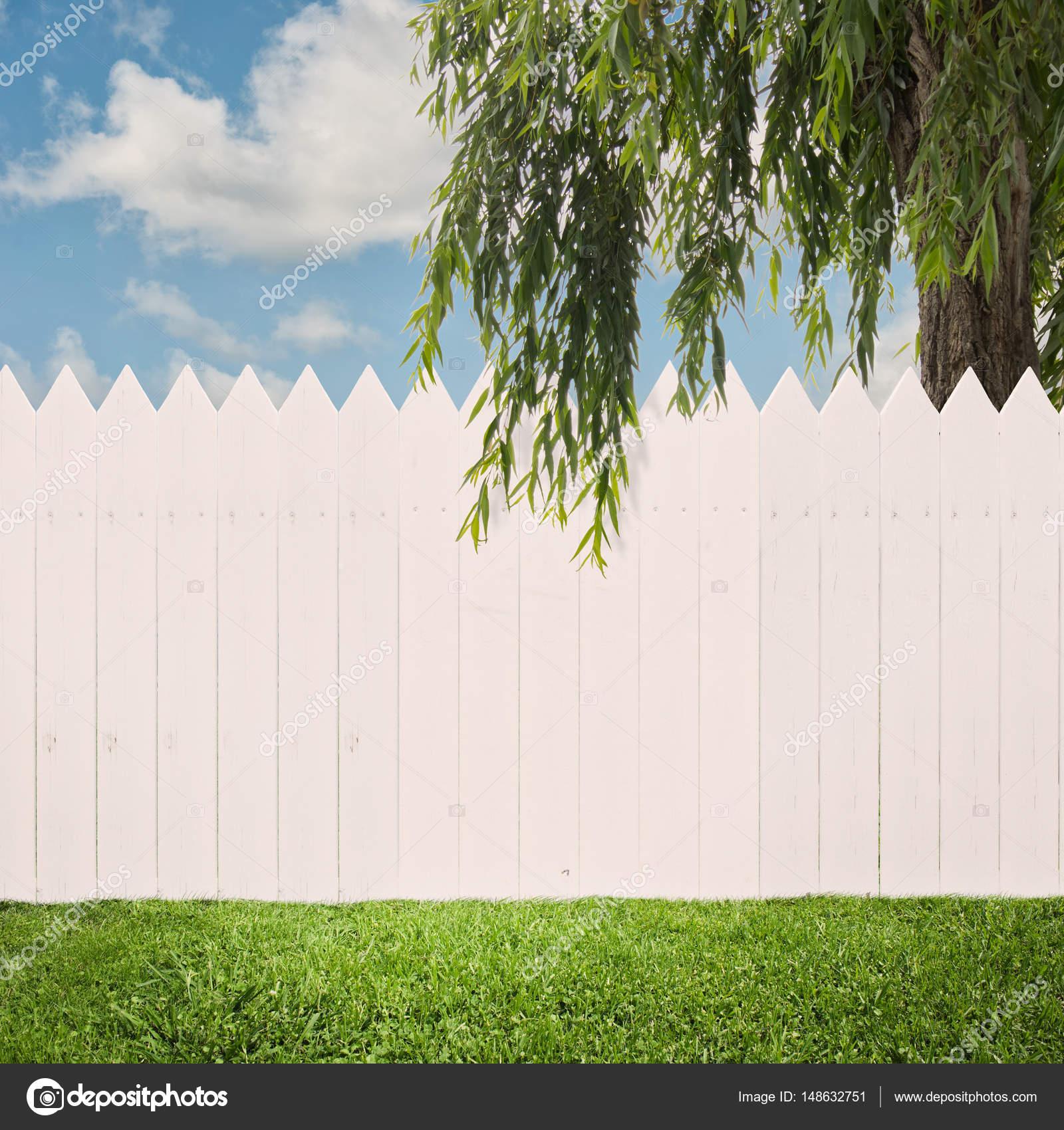weißer zaun auf einen hinterhof — stockfoto © xavigm99 #148632751