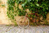 old red bicycle against an old wall