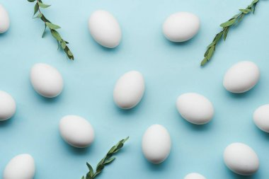 White eggs make pattern with myrtle branches on mint colour background