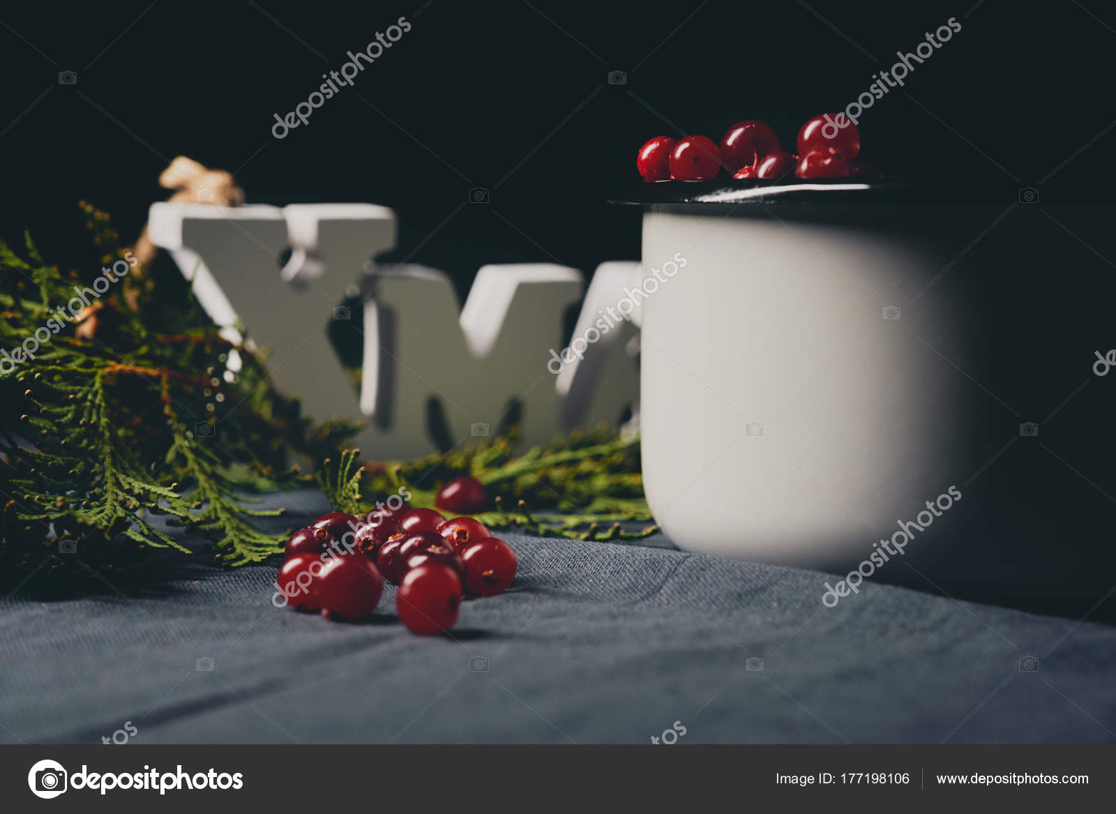 christmas themed background xmas sign red cranberries thuja — stock