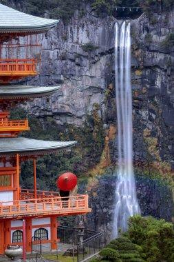 Pagoda of Seiganto ji T