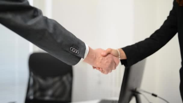 Business people handshake