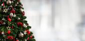 Christmas tree, bright white background