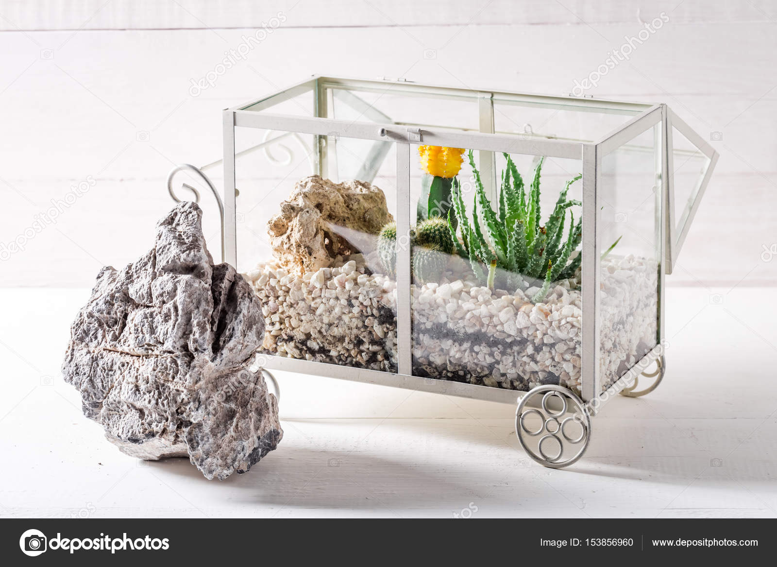 Small Terrarium With Cactus And Piece Of Desert Stock Photo