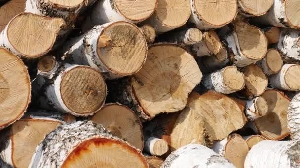Kmeny stromů jsou naskládány do velké hromady dřeva na dvoře