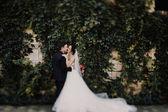 Fényképek Nézd meg a fenti gyönyörű esküvői pár csók az esti kert