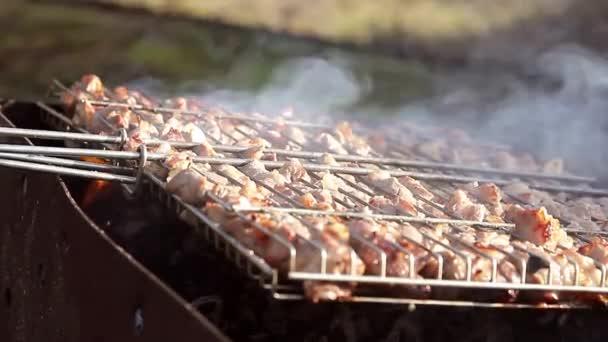 Grilování, maso na oheň, příroda, steak na gril detail. Kebab na jehle vařené na uhlí v kouři. Jídlo venku, relaxace