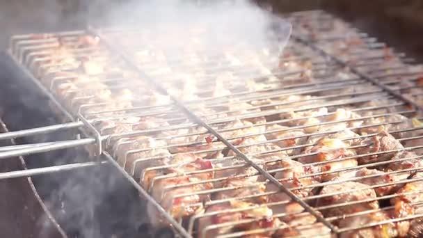Grilování, maso na oheň, příroda, steak na gril detail. Kebab na jehle vařené na uhlí v kouři. Jídlo venku, relaxace.