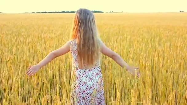Liebenswertes kleines Mädchen spielt an einem warmen Sommertag im Weizenfeld