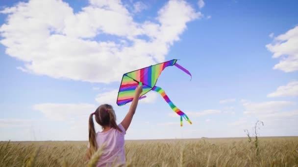 Hezká holka si v létě hraje s drakem na pšeničném poli. Dětství, koncepce životního stylu.