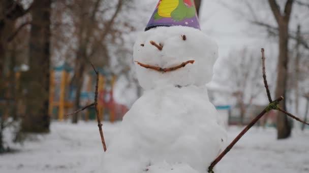 Porträt Schneemann im Winterpark.