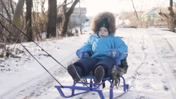 Mama trägt ein Kind auf einem Schlitten über den schneebedeckten Wald. Heiteres Winterferienkonzept.