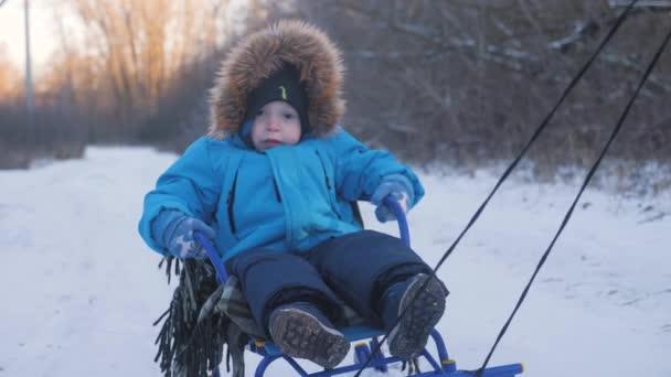 Eltern tragen im Winter fröhliche kleine Jungen auf Schlitten. Kleinkind genießt eine Schlittenfahrt. Outdoor-Spaß für den Familienweihnachtsurlaub.
