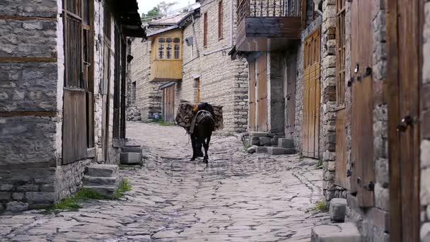 Stará vesnice cesta