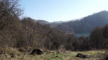 Autumn Forest landscape - Azerbaijan nature