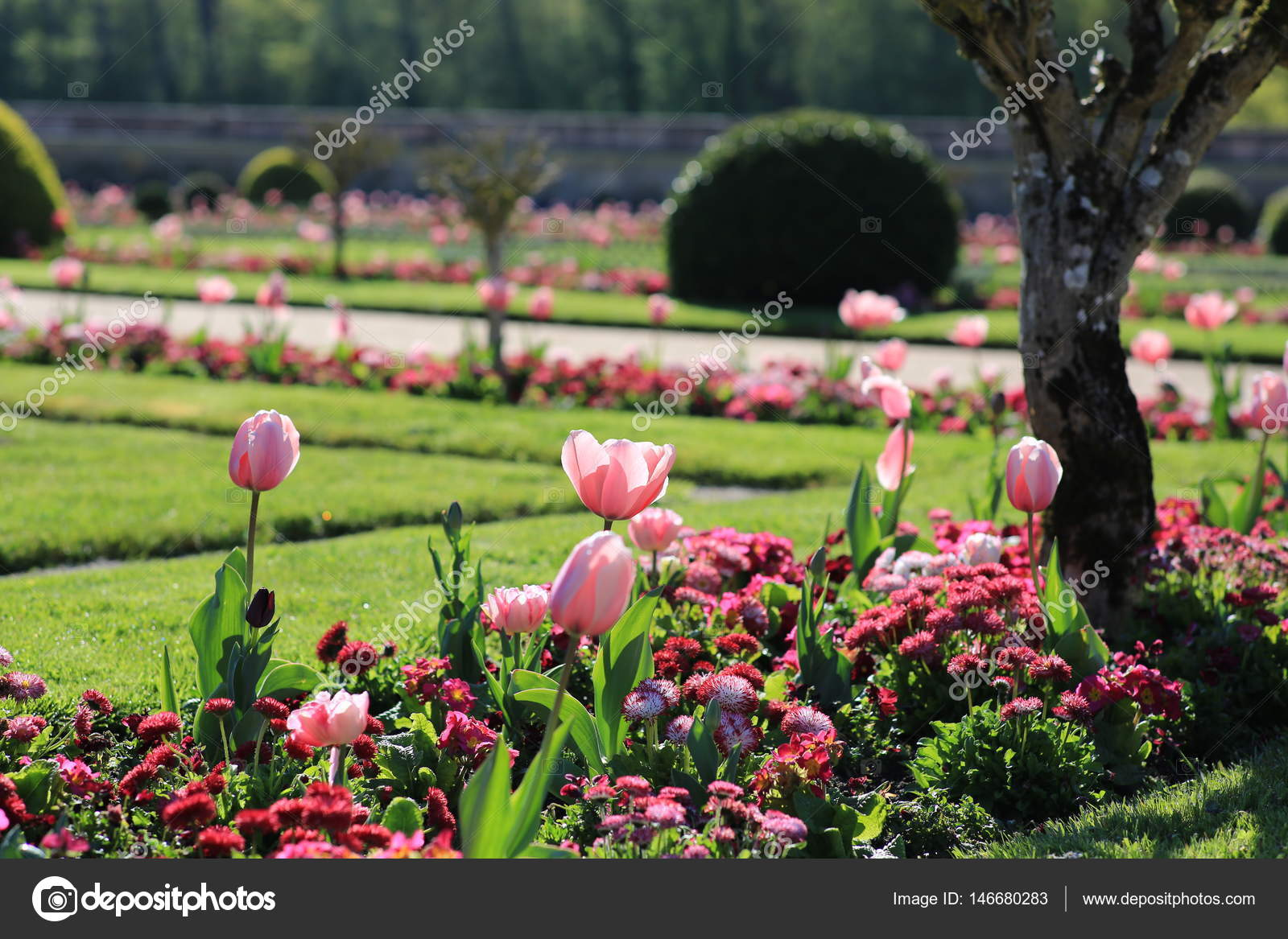 S&le of landscape design with tulips \u2014 Stock Photo & sample of landscape design with tulips \u2014 Stock Photo © telev #146680283