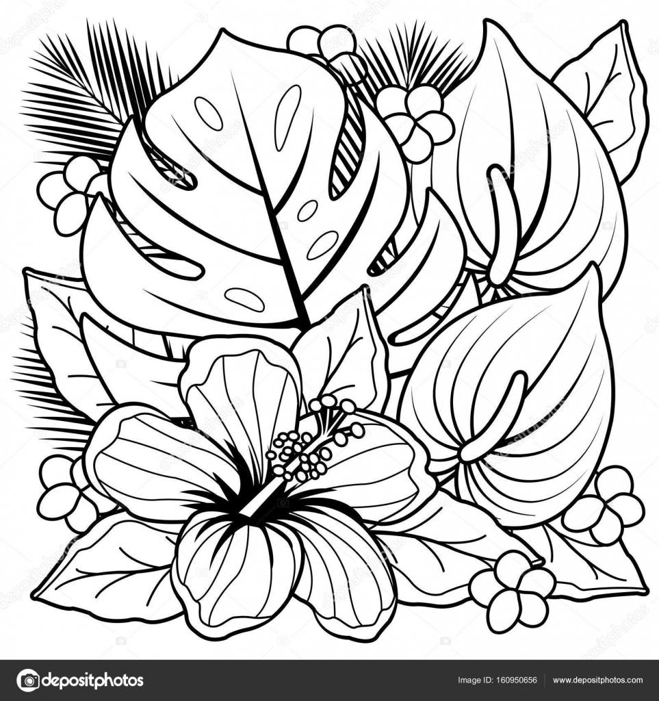 Plantes tropicales et fleurs d\u0027hibiscus. Noir et blanc, livre de coloriage \u2014