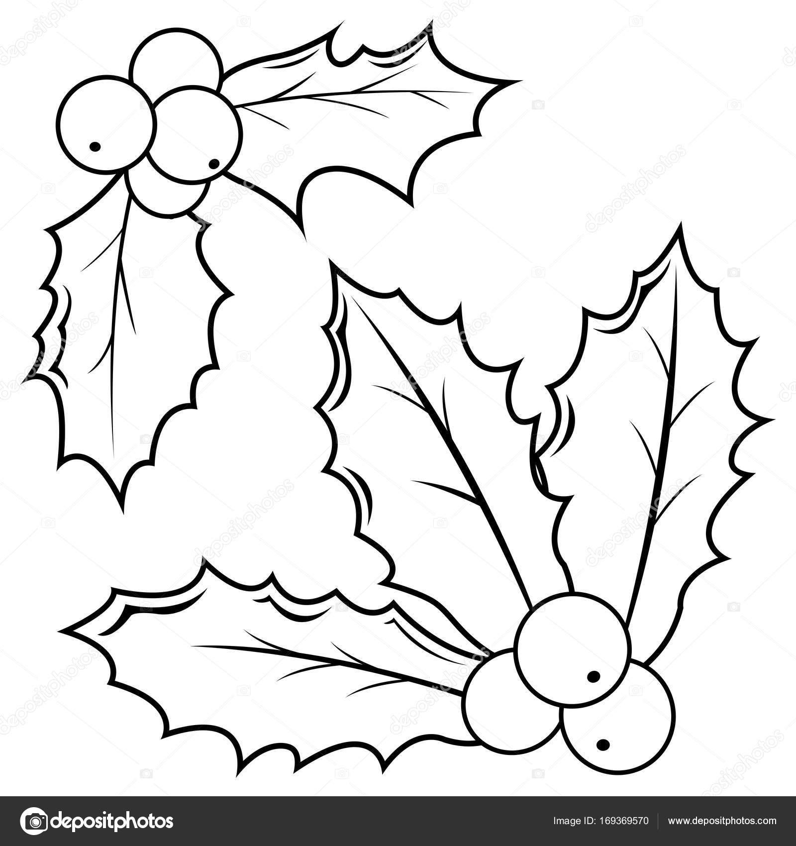 Ramitas de bayas de acebo. Blanco y negro para colorear página del ...