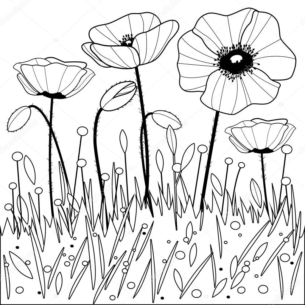 klaproos bloemen zwart wit boekenpagina kleurplaten