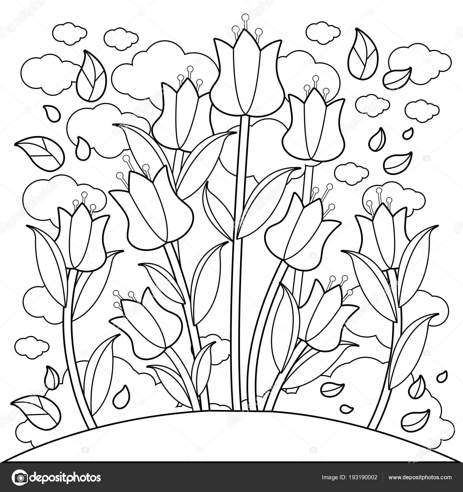Lale çiçek Boyama Kitabı Sayfası Stok Vektör Stockakia 193190002