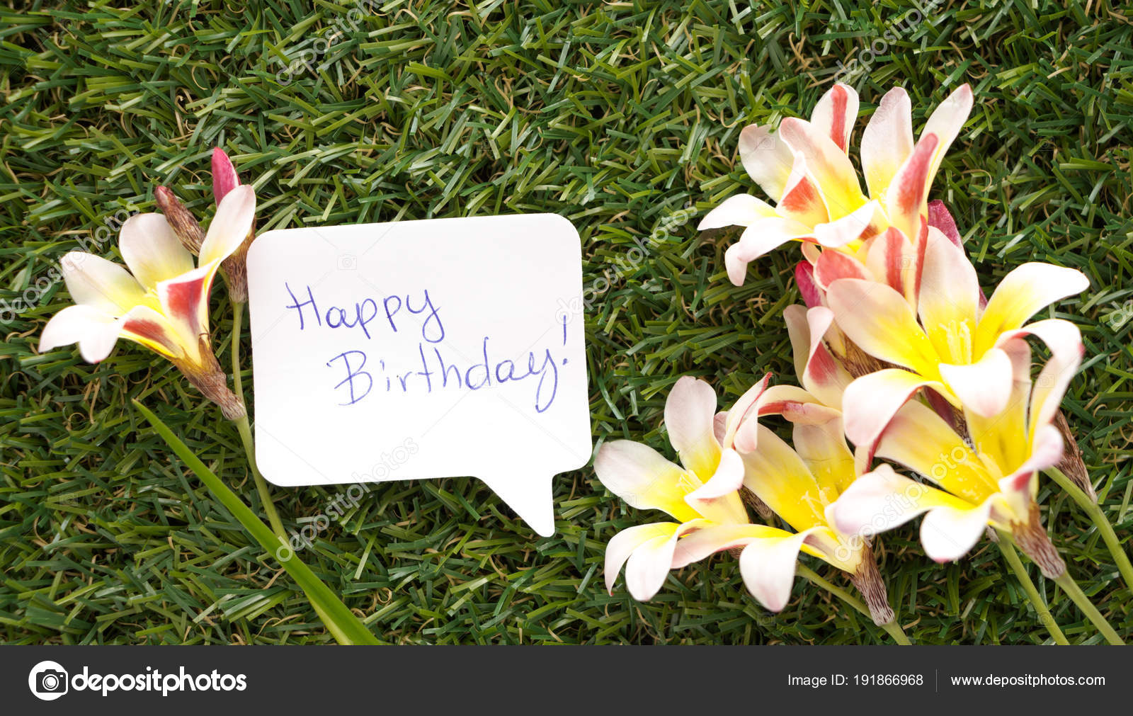 Note in shape of a chat bubble with words happy birthday and note in shape of a chat bubble with words happy birthday and flowers on izmirmasajfo