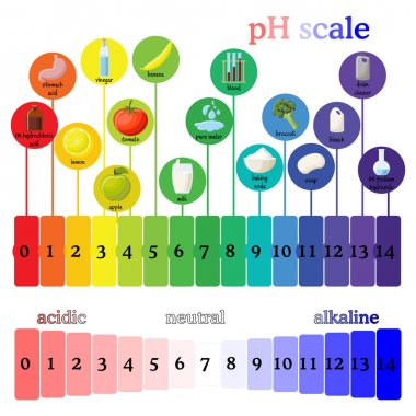 pH scale.  Litmus paper color chart.
