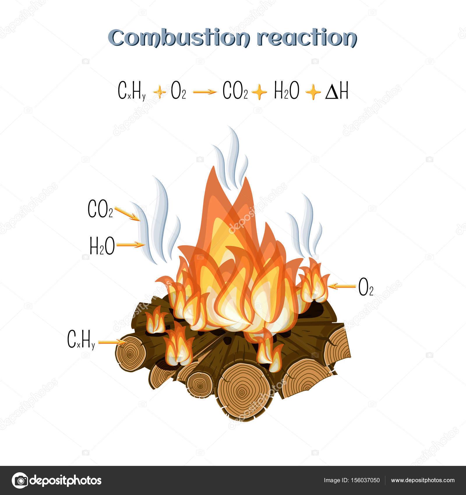 Reacción de combustión - madera ardiendo en el fuego de ...