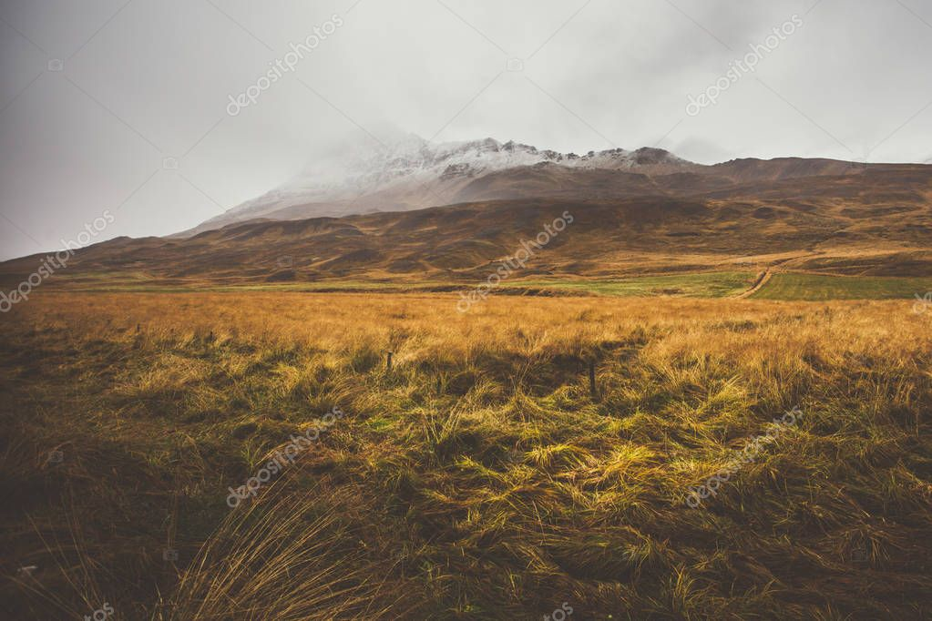 Meadow in front of a empty mountain range with fog and snow. Lov