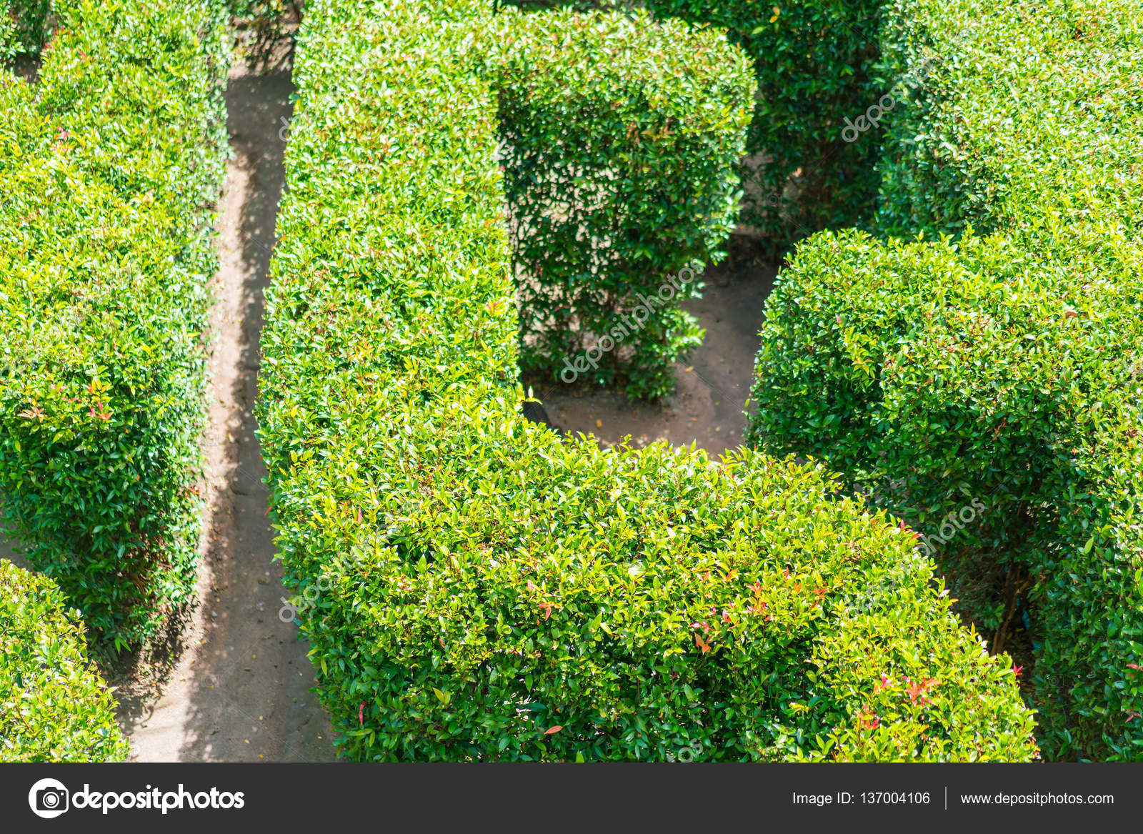 Vue de dessus d\'un labyrinthe de jardin vert — Photographie ...