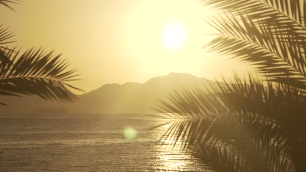 Vycházející slunce přes dlaně nad moře a pouštní hory