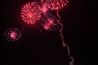 celebration background beautiful colorful firework on night sky