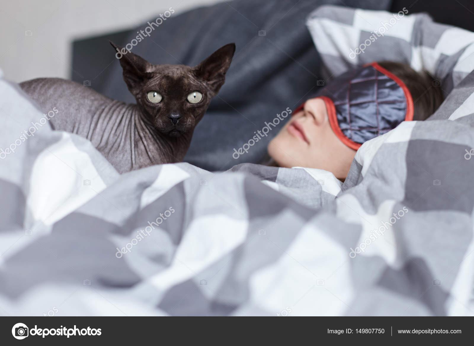 Die einzigartige Bodyguard. Orientalische Katze ist auf der Hut ...