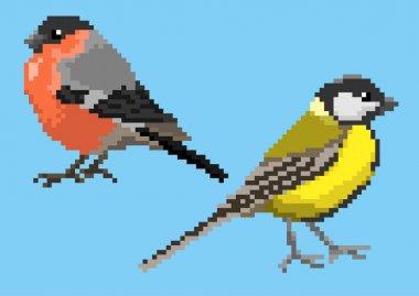 Pixelated titmouse and bullfinch