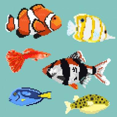 Set of pixel exotic fish